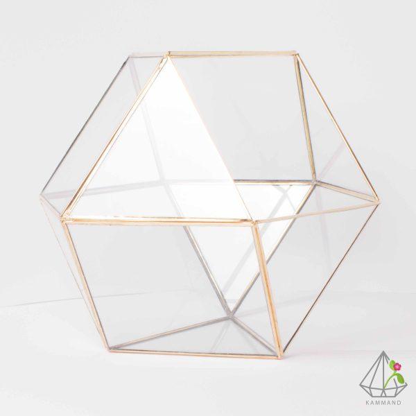 ظروف تراریوم، تراریوم چند وجهی ، تراریوم چند ضلعی ،گلدان شیشه ای، تراریوم، باغ شیشه ای ، فروشگاه اینترنتی کمند