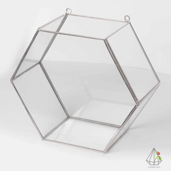 ظروف تراریوم، تراریوم چند وجهی ، تراریوم چند ضلعی دیوار کوب، تراریوم دیوارکوب ،گلدان شیشه ای، تراریوم، باغ شیشه ای ، فروشگاه اینترنتی کمند